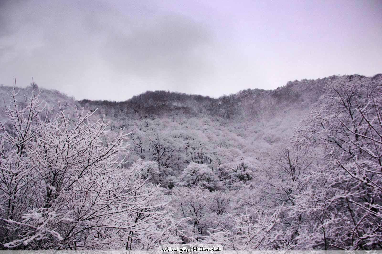 زمستان 1390 گرگان توسکستان
